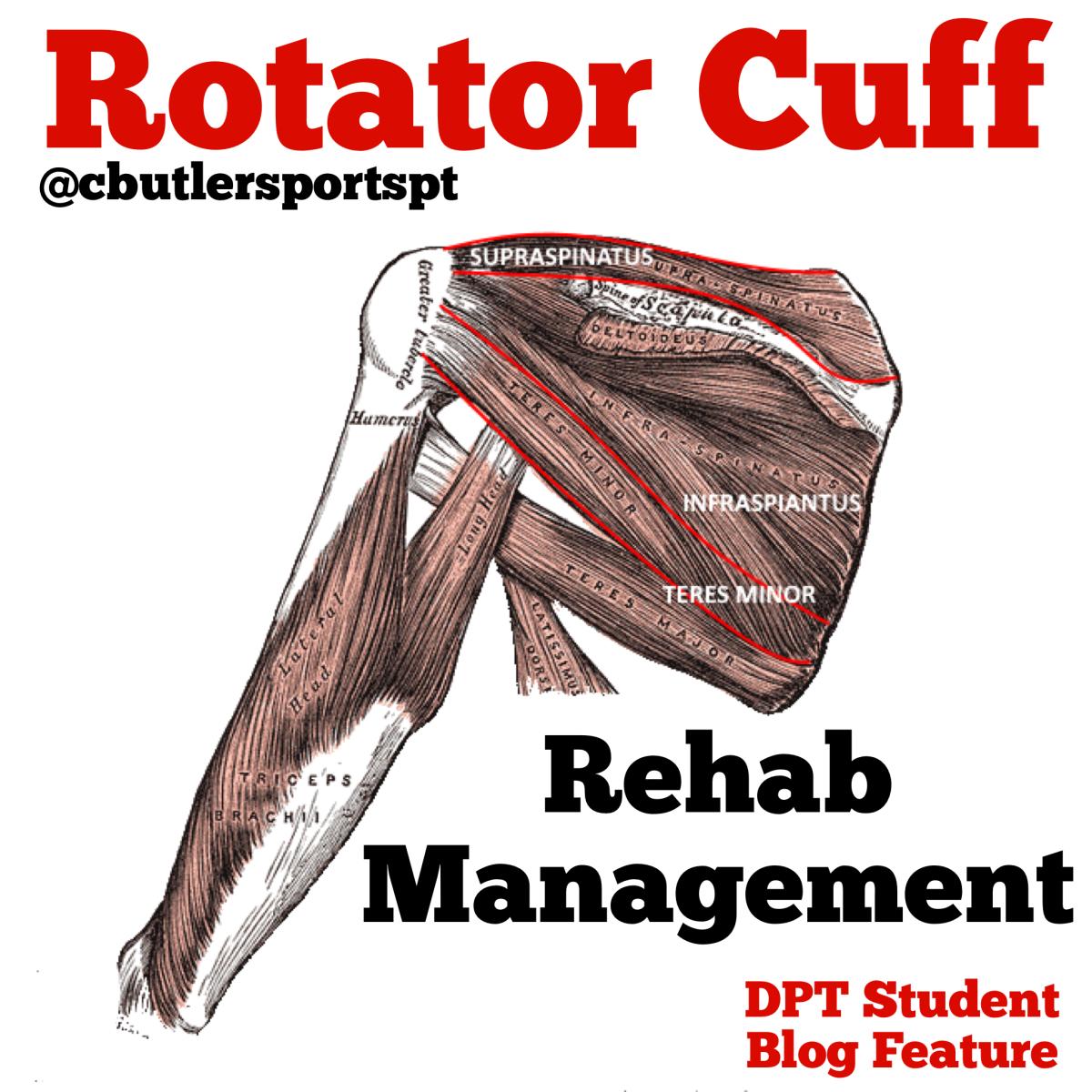 Rotator Cuff RehabManagement